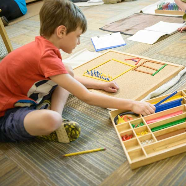 Elementary School Curriculum: Lower Elementary Curriculum